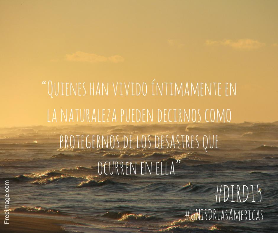 IDDR2015
